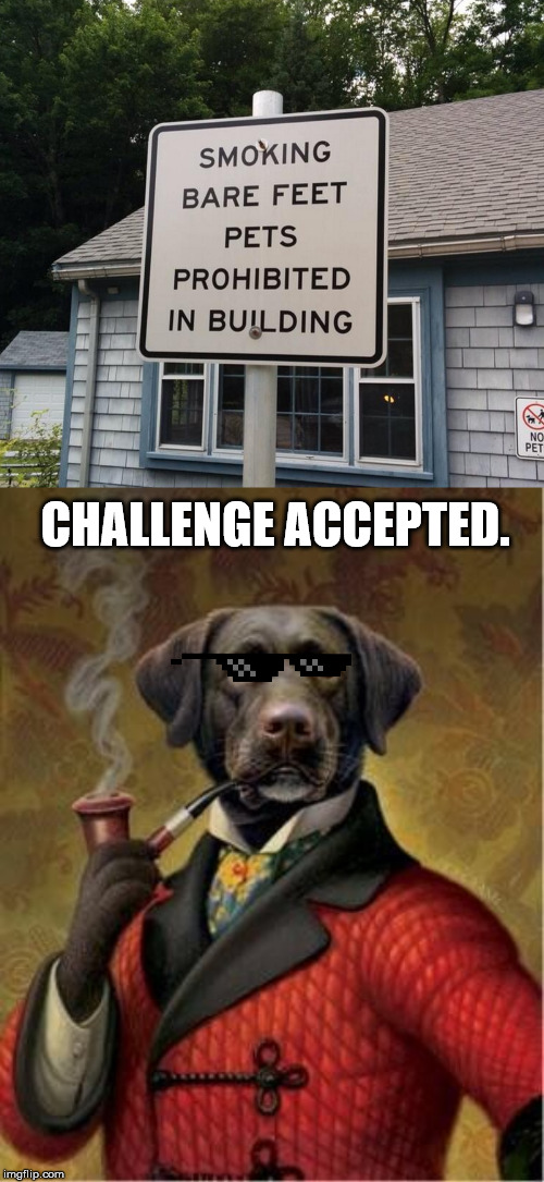 "Stupid Signs Week April 17-23rd. ""The humans doth protest too much methinks."" 