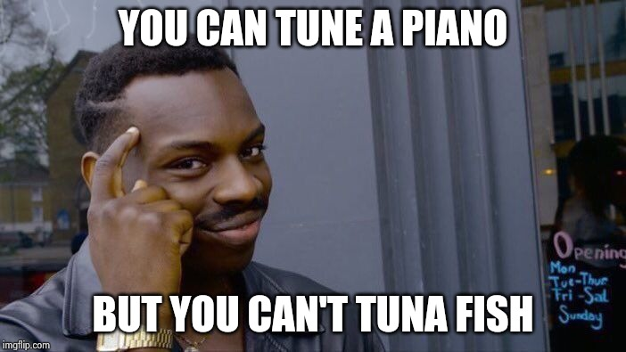 Roll Safe Think About It Meme | YOU CAN TUNE A PIANO BUT YOU CAN'T TUNA FISH | image tagged in memes,roll safe think about it | made w/ Imgflip meme maker