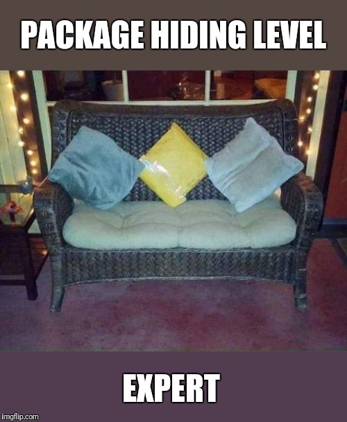 I would love to work for amazon so I could send customers pictures of clever hiding places |  PACKAGE HIDING LEVEL; EXPERT | image tagged in package,hiding,amazon,delivery | made w/ Imgflip meme maker