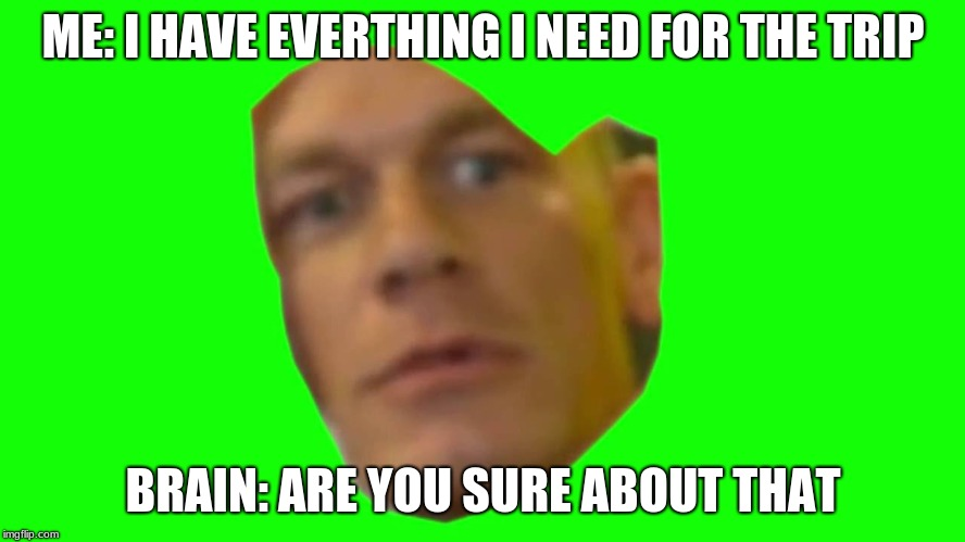 Are you sure about that? (Cena) | ME: I HAVE EVERTHING I NEED FOR THE TRIP BRAIN: ARE YOU SURE ABOUT THAT | image tagged in are you sure about that cena | made w/ Imgflip meme maker
