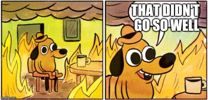 burning dog | THAT DIDN'T GO SO WELL | image tagged in burning dog | made w/ Imgflip meme maker