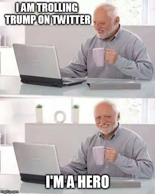 Hide the Pain Harold | I AM TROLLING TRUMP ON TWITTER I'M A HERO | image tagged in memes,hide the pain harold | made w/ Imgflip meme maker