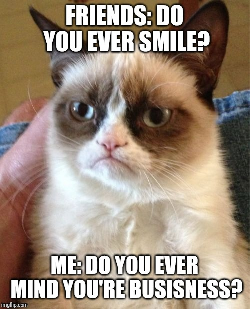Grumpy Cat | FRIENDS: DO YOU EVER SMILE? ME: DO YOU EVER MIND YOU'RE BUSISNESS? | image tagged in memes,grumpy cat | made w/ Imgflip meme maker