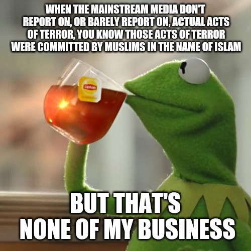 But Thats None Of My Business | WHEN THE MAINSTREAM MEDIA DON'T REPORT ON, OR BARELY REPORT ON, ACTUAL ACTS OF TERROR, YOU KNOW THOSE ACTS OF TERROR WERE COMMITTED BY MUSLI | image tagged in memes,but thats none of my business,kermit the frog | made w/ Imgflip meme maker