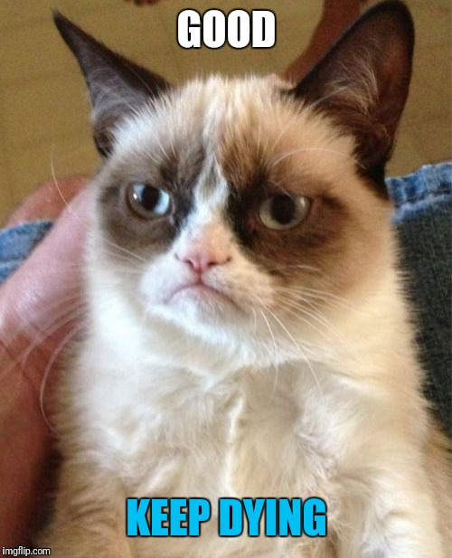 Grumpy Cat Meme | GOOD KEEP DYING | image tagged in memes,grumpy cat | made w/ Imgflip meme maker