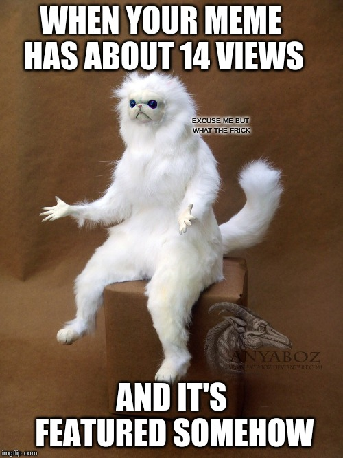 Why are my 14 View Memes Featured | WHEN YOUR MEME HAS ABOUT 14 VIEWS AND IT'S FEATURED SOMEHOW EXCUSE ME BUT WHAT THE FRICK | image tagged in memes,persian cat room guardian single,imgflip,featured,excuse me but wtf,views | made w/ Imgflip meme maker