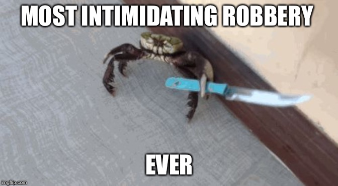 Knife wielding crab |  MOST INTIMIDATING ROBBERY; EVER | image tagged in knife wielding crab | made w/ Imgflip meme maker