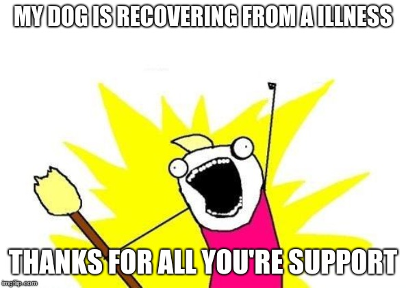 thank you for all of the support imgflip | MY DOG IS RECOVERING FROM A ILLNESS THANKS FOR ALL YOU'RE SUPPORT | image tagged in memes,x all the y,thank you,thanks,dogs,recovery | made w/ Imgflip meme maker