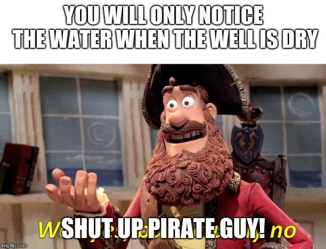 Well yes but actually no | YOU WILL ONLY NOTICE THE WATER WHEN THE WELL IS DRY SHUT UP PIRATE GUY! | image tagged in well yes but actually no | made w/ Imgflip meme maker