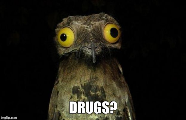 Weird Stuff I Do Potoo | DRUGS? | image tagged in memes,weird stuff i do potoo | made w/ Imgflip meme maker