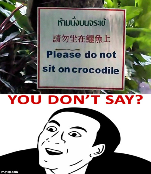 stupid signs week | image tagged in you don't say,stupid signs week,crocodile | made w/ Imgflip meme maker
