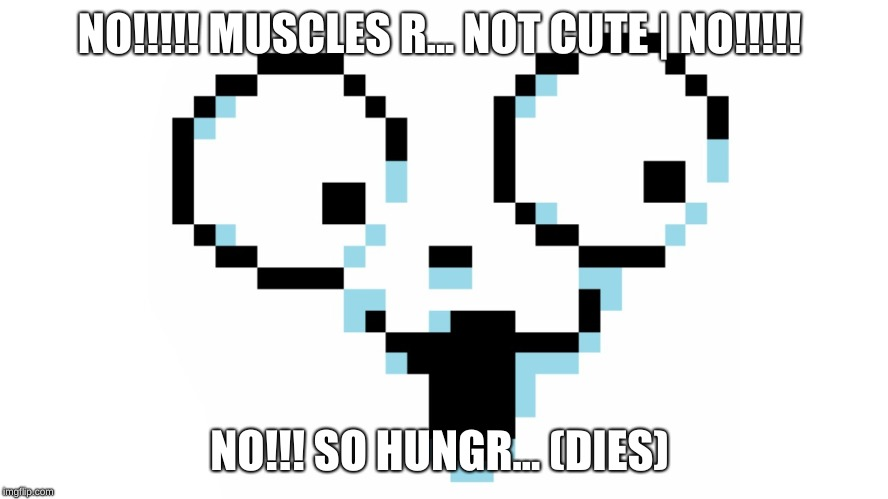 Temmie meme | NO!!!!! MUSCLES R... NOT CUTE | NO!!!!! NO!!! SO HUNGR... (DIES) | image tagged in temmie meme | made w/ Imgflip meme maker