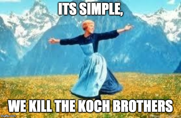 Look At All These | ITS SIMPLE, WE KILL THE KOCH BROTHERS | image tagged in memes,look at all these | made w/ Imgflip meme maker