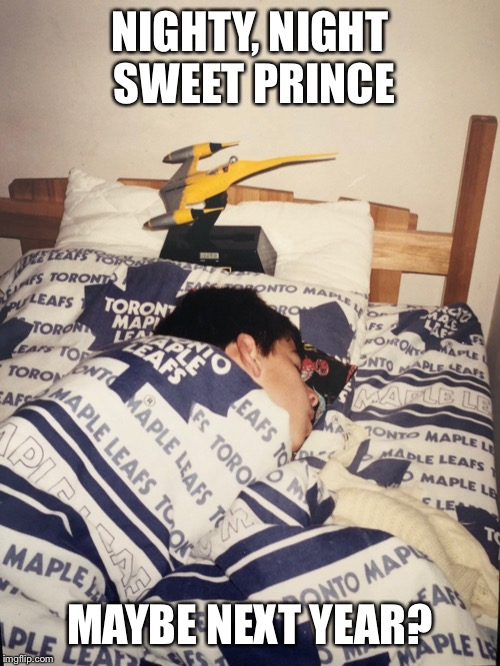 $11 million well spent | NIGHTY, NIGHT SWEET PRINCE MAYBE NEXT YEAR? | image tagged in ice hockey | made w/ Imgflip meme maker