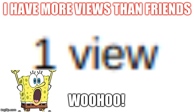 I HAVE MORE VIEWS THAN FRIENDS WOOHOO! | image tagged in 9/11 truth movement | made w/ Imgflip meme maker