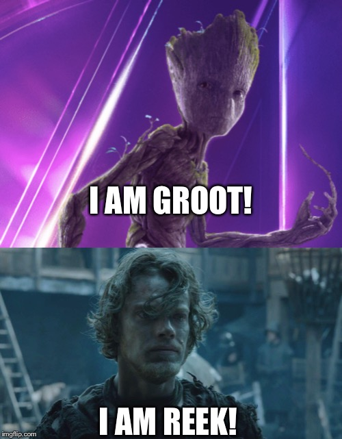 I Am Groot/Reek | I AM GROOT! I AM REEK! | image tagged in game of thrones,i am groot,marvel,theon greyjoy | made w/ Imgflip meme maker