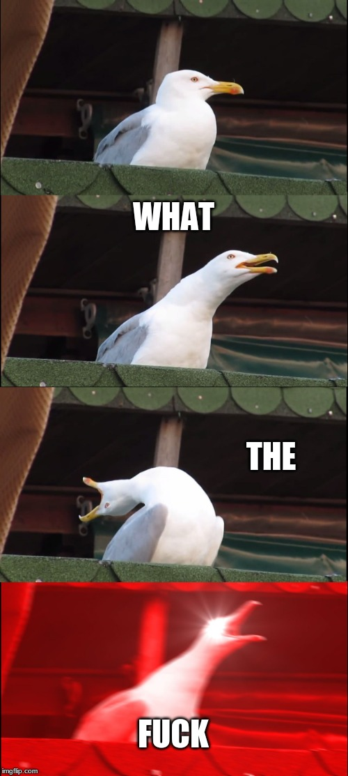 Inhaling Seagull Meme | WHAT THE F**K | image tagged in memes,inhaling seagull | made w/ Imgflip meme maker