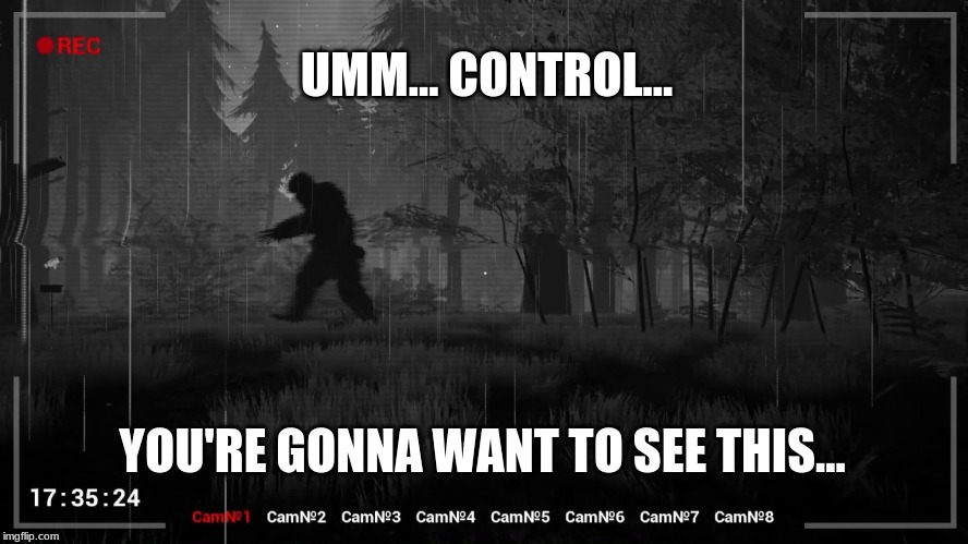 Late Nights At The Security Desk | UMM... CONTROL... YOU'RE GONNA WANT TO SEE THIS... | image tagged in bigfoot,sasquatch,funny,humor,squatching | made w/ Imgflip meme maker