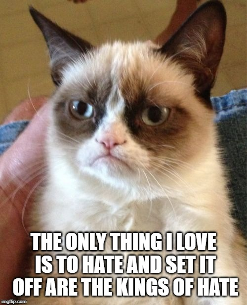Hate | THE ONLY THING I LOVE IS TO HATE AND SET IT OFF ARE THE KINGS OF HATE | image tagged in memes,grumpy cat | made w/ Imgflip meme maker