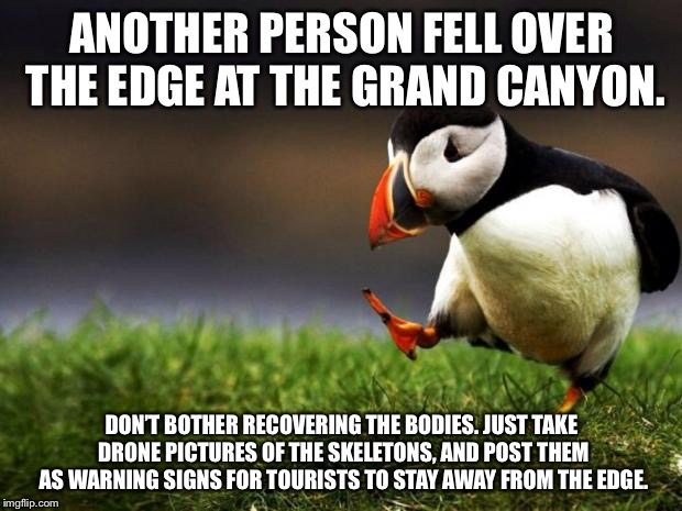 This should cause Grand Canyon deaths to drop | ANOTHER PERSON FELL OVER THE EDGE AT THE GRAND CANYON. DON'T BOTHER RECOVERING THE BODIES. JUST TAKE DRONE PICTURES OF THE SKELETONS, AND PO | image tagged in memes,unpopular opinion puffin,the grand canyon,skeleton,warning sign,stupid people | made w/ Imgflip meme maker