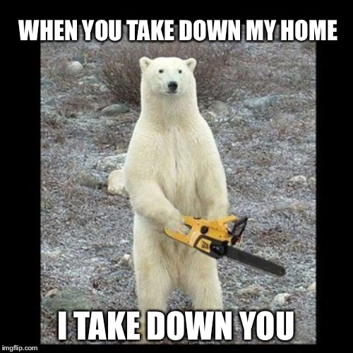 Chainsaw Bear Meme | WHEN YOU TAKE DOWN MY HOME I TAKE DOWN YOU | image tagged in memes,chainsaw bear | made w/ Imgflip meme maker
