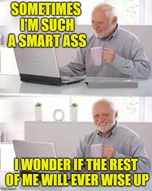 Speaking for the author obviously! | SOMETIMES I'M SUCH A SMART ASS I WONDER IF THE REST OF ME WILL EVER WISE UP | image tagged in memes,hide the pain harold,smartass | made w/ Imgflip meme maker