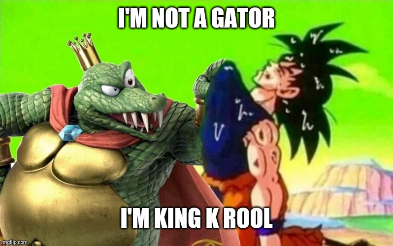 when you play king k rool | I'M NOT A GATOR I'M KING K ROOL | image tagged in when you play king k rool | made w/ Imgflip meme maker