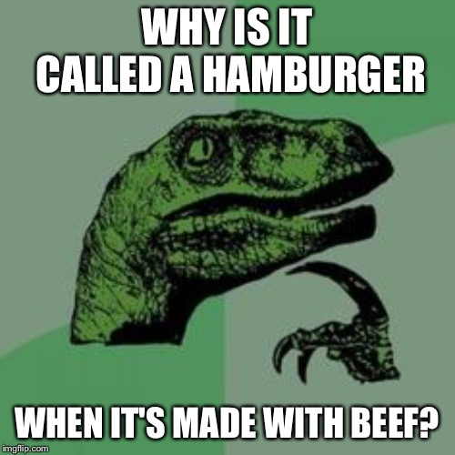 Time raptor  | WHY IS IT CALLED A HAMBURGER WHEN IT'S MADE WITH BEEF? | image tagged in time raptor | made w/ Imgflip meme maker