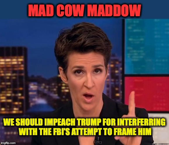 From Nothing Comes Nothing | WE SHOULD IMPEACH TRUMP FOR INTERFERRING WITH THE FBI'S ATTEMPT TO FRAME HIM MAD COW MADDOW | image tagged in maddow,impeachment,fbi,nothing burger | made w/ Imgflip meme maker