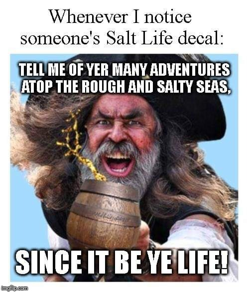 Ahoy, Me Tardies! | image tagged in salt life,pirate,beer,meme,sarcasm,bumper sticker | made w/ Imgflip meme maker