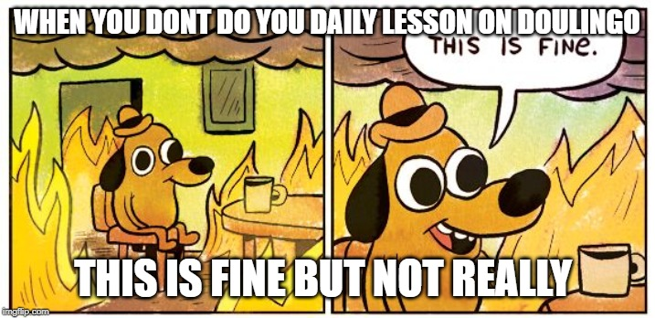 This is fine dog | WHEN YOU DONT DO YOU DAILY LESSON ON DOULINGO THIS IS FINE BUT NOT REALLY | image tagged in this is fine dog | made w/ Imgflip meme maker