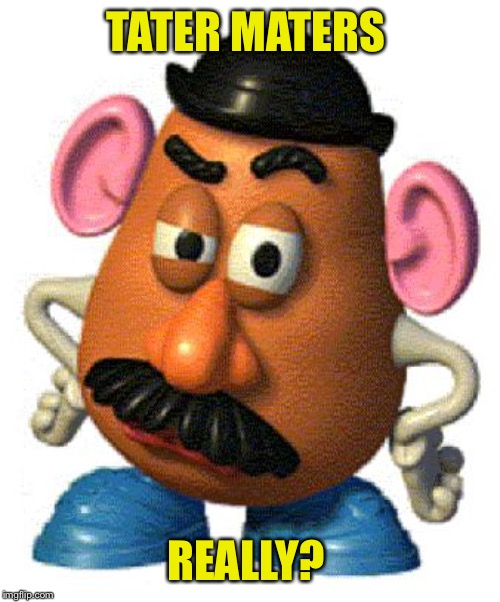 Mr Potato Head | TATER MATERS REALLY? | image tagged in mr potato head | made w/ Imgflip meme maker