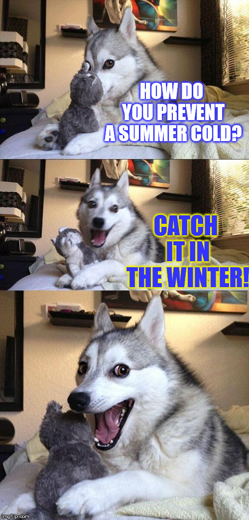 Bad Pun Doctor Dog | HOW DO YOU PREVENT A SUMMER COLD? CATCH IT IN THE WINTER! | image tagged in memes,bad pun dog,funny,weather,cold,doctor | made w/ Imgflip meme maker