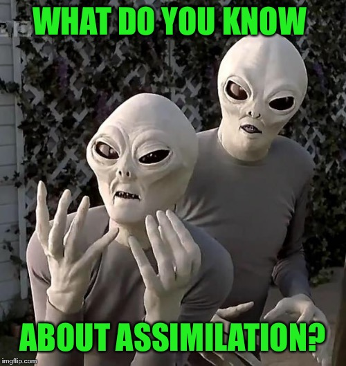 Aliens | WHAT DO YOU KNOW ABOUT ASSIMILATION? | image tagged in aliens | made w/ Imgflip meme maker