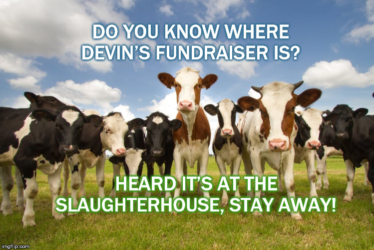 DO YOU KNOW WHERE DEVIN'S FUNDRAISER IS? HEARD IT'S AT THE SLAUGHTERHOUSE, STAY AWAY! | image tagged in devin nunes,donald trump,secret,pay for play,devins cow,republicans | made w/ Imgflip meme maker
