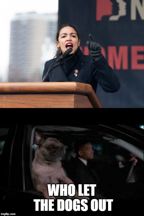 Who let the dogs out | WHO LET THE DOGS OUT | image tagged in men in black,alexandria ocasio-cortez,politics | made w/ Imgflip meme maker