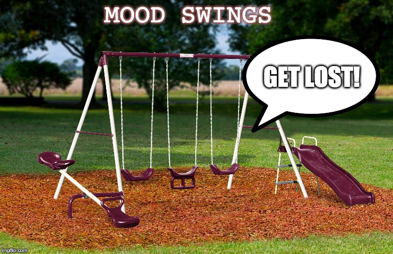 bi polar play set | MOOD SWINGS GET LOST! | image tagged in moods,swings,anger | made w/ Imgflip meme maker