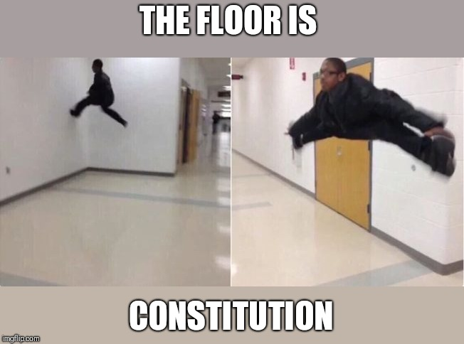floor is lava | THE FLOOR IS CONSTITUTION | image tagged in floor is lava | made w/ Imgflip meme maker