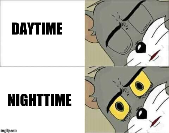 DAYTIME NIGHTTIME | image tagged in tom and jerry,unsettled tom | made w/ Imgflip meme maker
