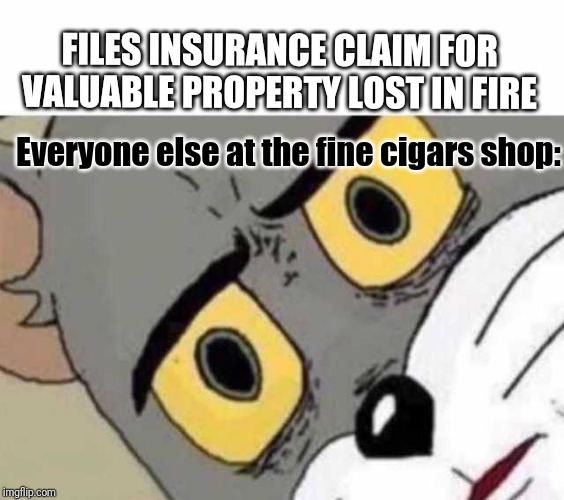 An then he was arrested for arson | FILES INSURANCE CLAIM FOR VALUABLE PROPERTY LOST IN FIRE Everyone else at the fine cigars shop: | image tagged in tom cat unsettled close up,cigar | made w/ Imgflip meme maker