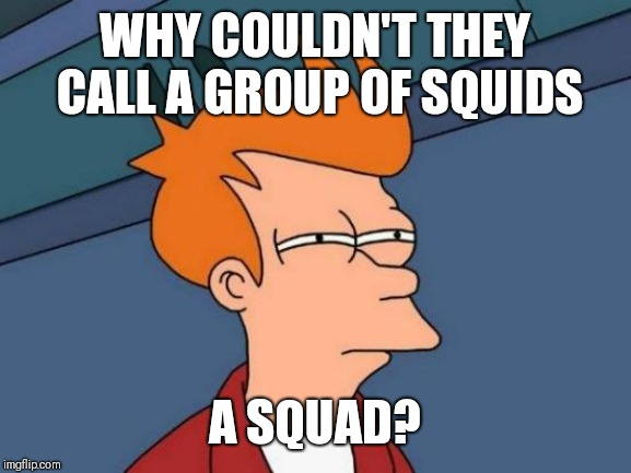 Futurama Fry | WHY COULDN'T THEY CALL A GROUP OF SQUIDS A SQUAD? | image tagged in memes,futurama fry | made w/ Imgflip meme maker