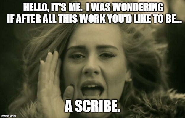 adele hello | HELLO, IT'S ME.  I WAS WONDERING IF AFTER ALL THIS WORK YOU'D LIKE TO BE... A SCRIBE. | image tagged in adele hello | made w/ Imgflip meme maker