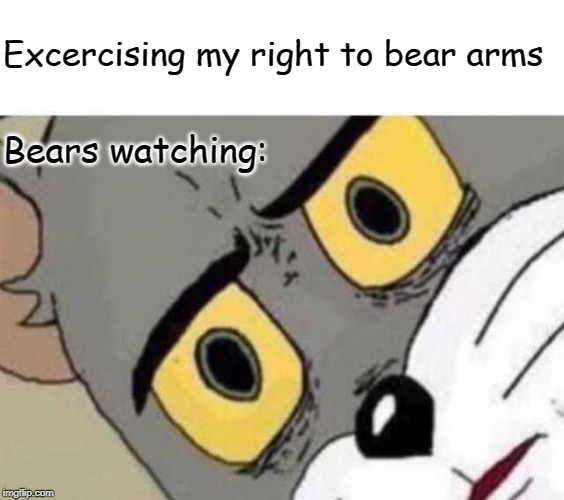 Now THAT would make them paws for a moment | Excercising my right to bear arms Bears watching: | image tagged in tom cat unsettled close up,second amendment,right to bear arms | made w/ Imgflip meme maker
