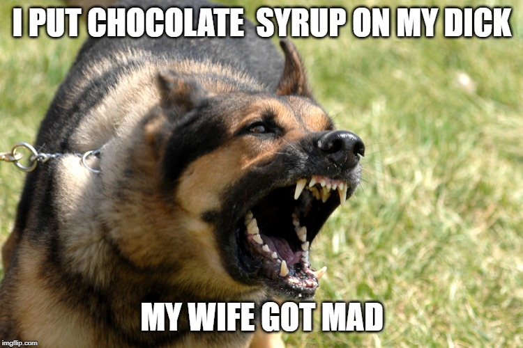 I PUT CHOCOLATE  SYRUP ON MY DICK; MY WIFE GOT MAD | image tagged in barking dog | made w/ Imgflip meme maker