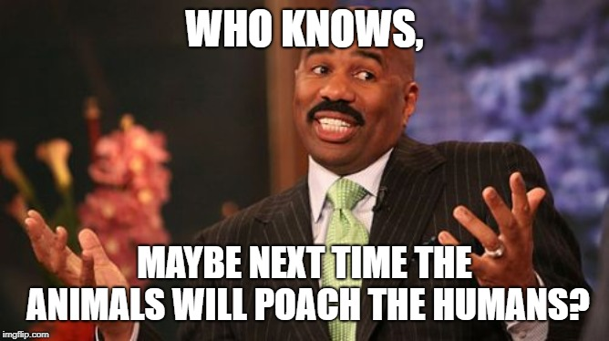 WHO KNOWS, MAYBE NEXT TIME THE ANIMALS WILL POACH THE HUMANS? | image tagged in memes,steve harvey | made w/ Imgflip meme maker