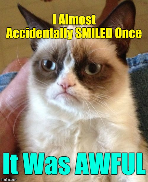 """It Takes More Muscles To Frown Than To Smile,  So That's How Grumpy Cat Does Her Workout"" 