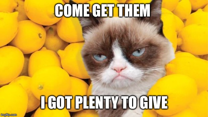 Grumpy Cat lemons | COME GET THEM I GOT PLENTY TO GIVE | image tagged in grumpy cat lemons | made w/ Imgflip meme maker