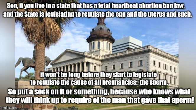 south carolina | Son, if you live in a state that has a fetal heartbeat abortion ban law, and the State is legislating to regulate the egg and the uterus and | image tagged in south carolina | made w/ Imgflip meme maker