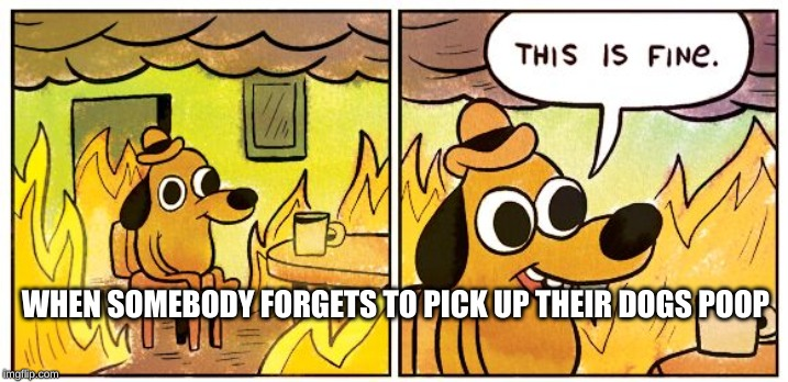 This is fine dog | WHEN SOMEBODY FORGETS TO PICK UP THEIR DOGS POOP | image tagged in this is fine dog | made w/ Imgflip meme maker