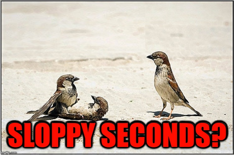 I don't care if it is your wife; I can't finish with you staring at me! | SLOPPY SECONDS? | image tagged in vince vance,birds,having fun,sloppy seconds,gang bang,my turn | made w/ Imgflip meme maker